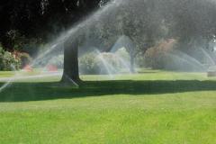 irrigazione-aldrovandi-vivai-garden-03