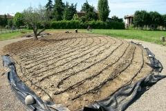 irrigazione-aldrovandi-vivai-garden-05